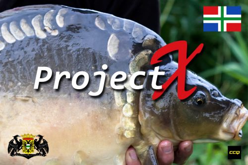 Carp project X