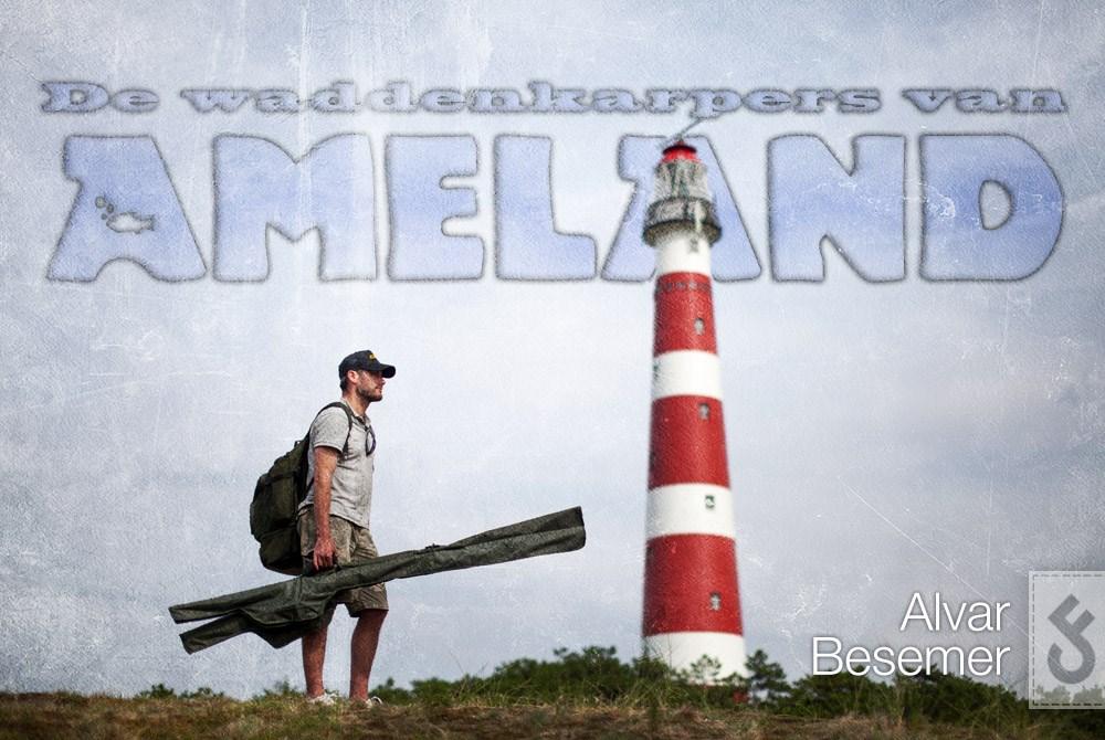 De Waddenkarpers van Ameland.